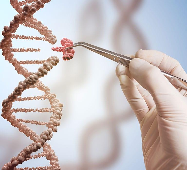 Genetics - 8TH SENSE